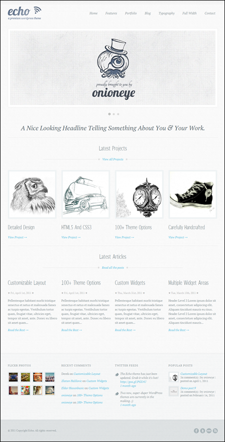 Echo clean wordpress themes