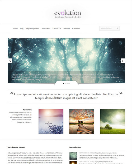 evolution responsive theme