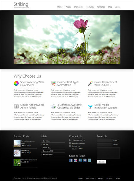 Striking – Premium Corporate & Portfolio WP Theme