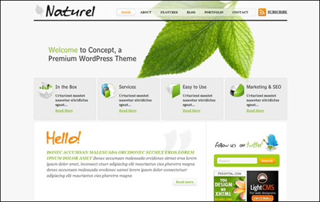 Natureal simple wordpress theme