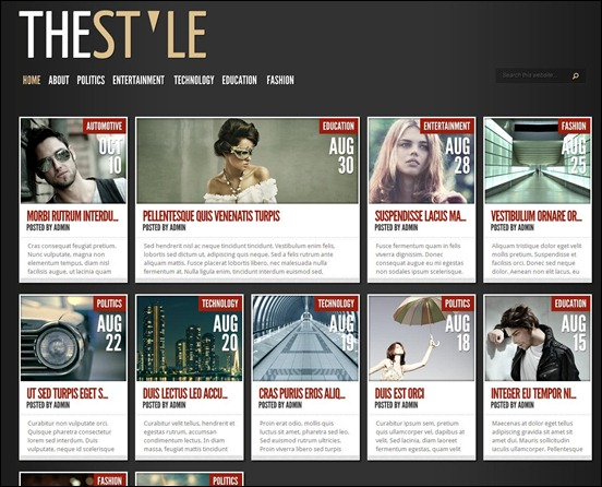 TheStyle