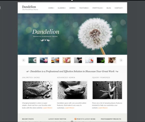 best wordpress themes dandelion