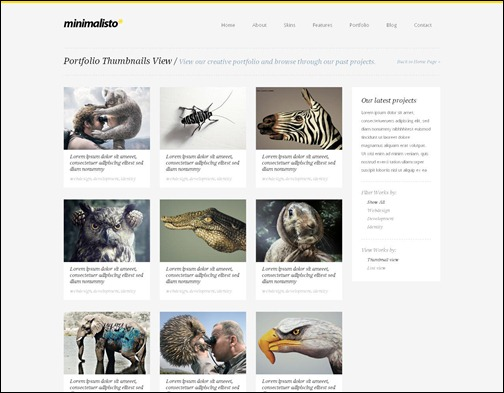 minimalisto-premium-wordpress-theme