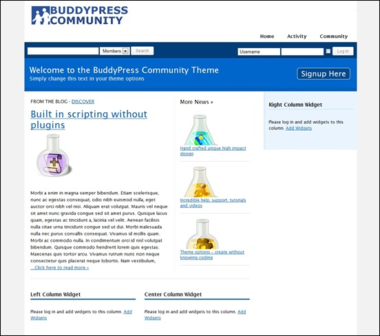 buddypress-community