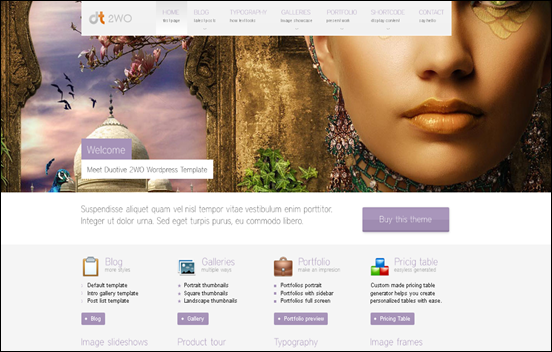 top wordpress themes 2011