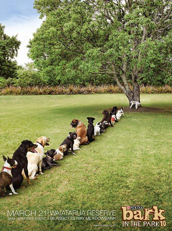 Purina Bark in the Park: Tree