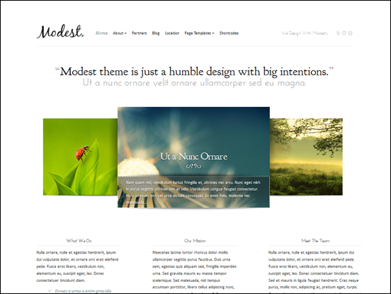 Modest Minimal WordPress CMS Theme
