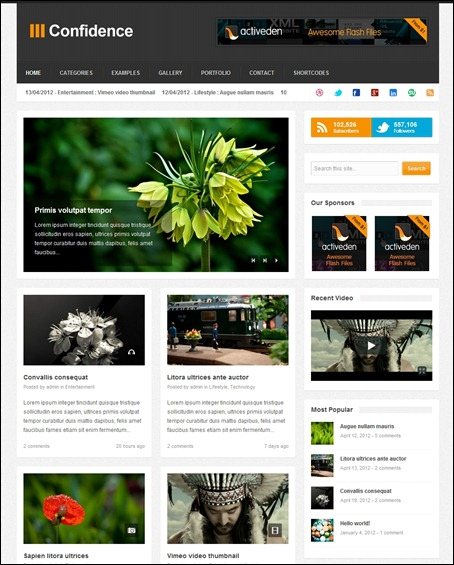 confidence-responsive-blog-magazine-theme2