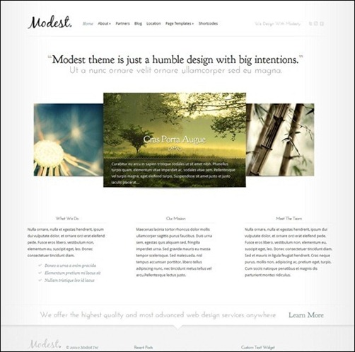 modest-clean-business-theme