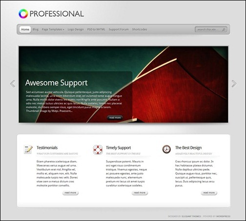 the-professional-wordpress-theme