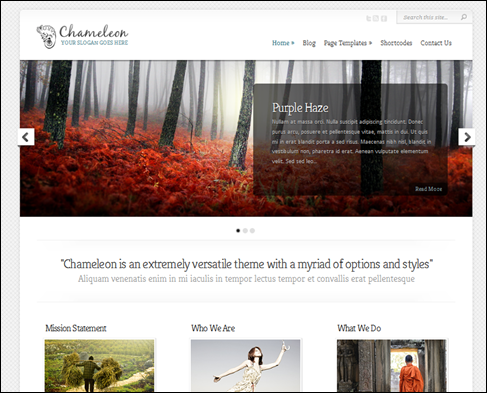 Chameleon WordPress Portfolio Theme