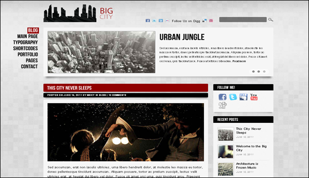 Big City - one of the beautiful travel WordPress Themes
