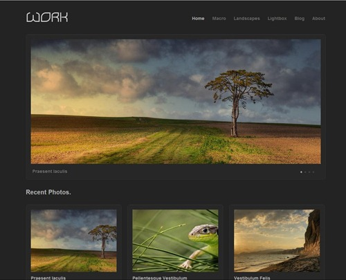 work-gallery-theme-wordpress