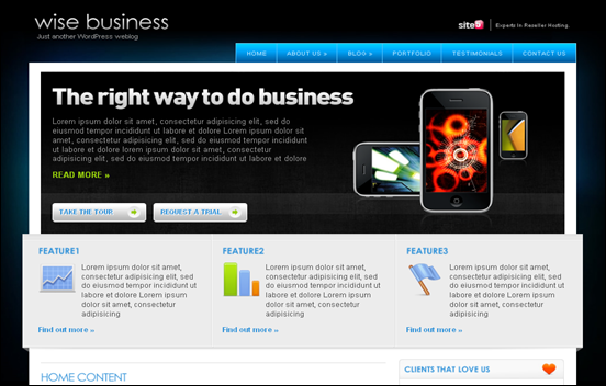 Best Business WordPress Themes for Company Websites-Wise Business