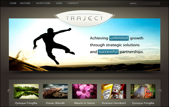 Best Business WordPress Themes for Company Websites-Traject