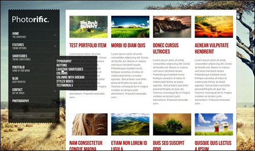 photorific-gallery-theme
