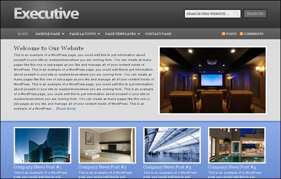 Best Business WordPress Themes for Company Websites-Executive