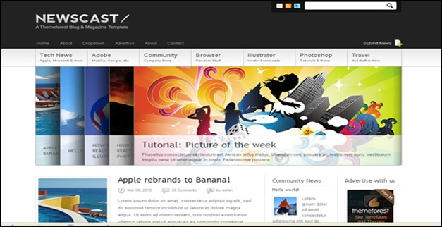 newscast best wordpress themes
