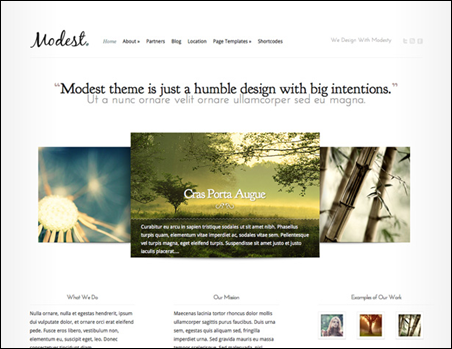 Modest Minimal WordPress Theme