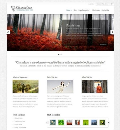 chameleon-simple-wordpress-theme