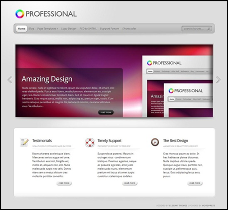 simple-ptofessional-wordpress-theme
