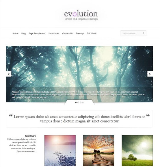 evolution-professional-wordpress-theme