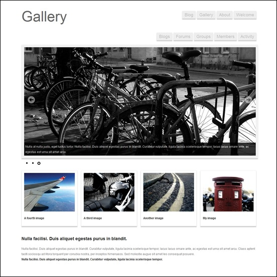 buddypress-gallery-theme
