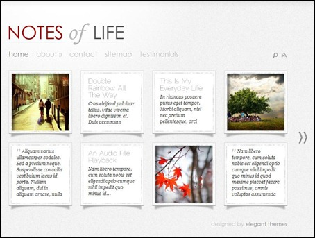 notes-of-life-theme