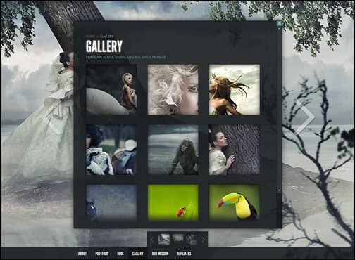 gleam-gallery-wordpress-theme