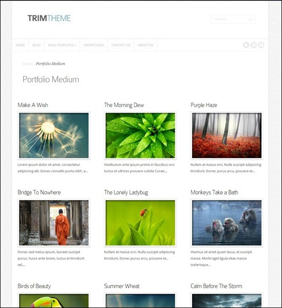 trim-responsive-wordpress-portfolio-theme