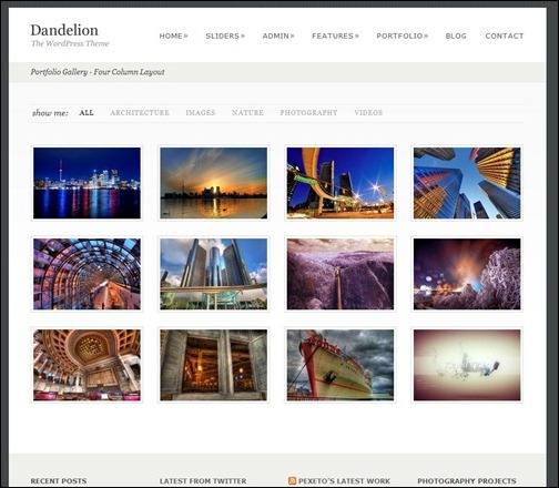dandelion-powerful-elegant-wordpress-theme