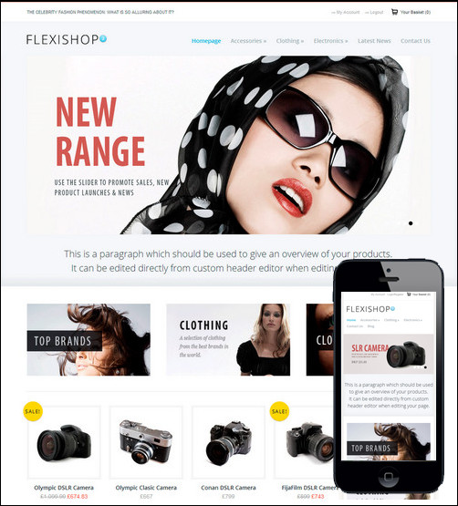 wp-flexishop-2-a-flexible-woocommerce-theme
