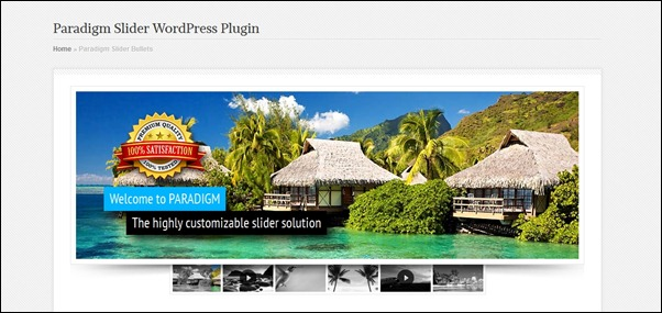 paradigm-slider-wordpress-plugin