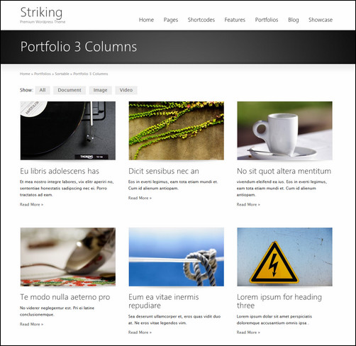 striking-premium-corporate-portfolio-wp-theme