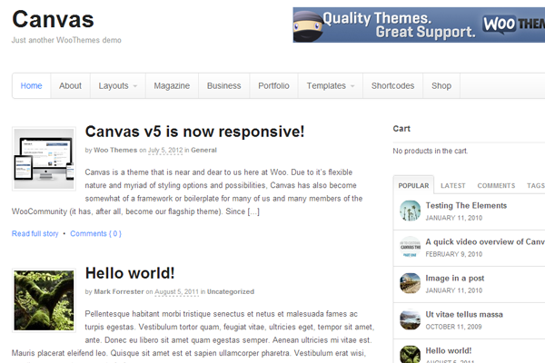 Canvas WordPress themes download eCommerce freebie