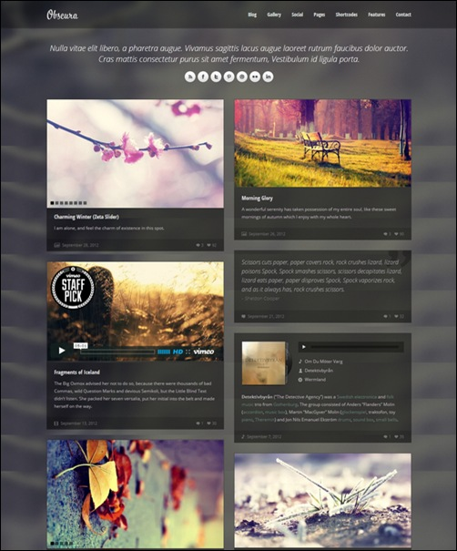 obscura-responsive-dark-wordpress-fullscreen-gallery-blog-theme