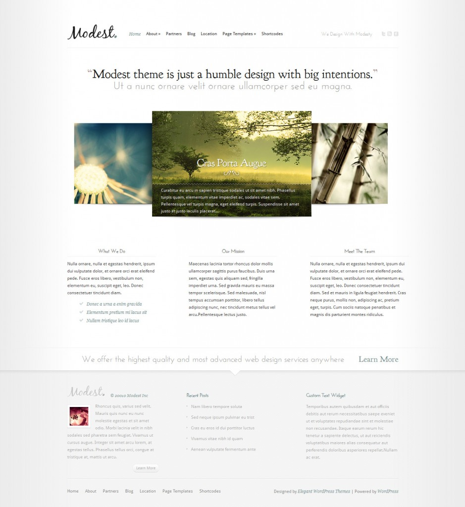 modest best wordpress themes