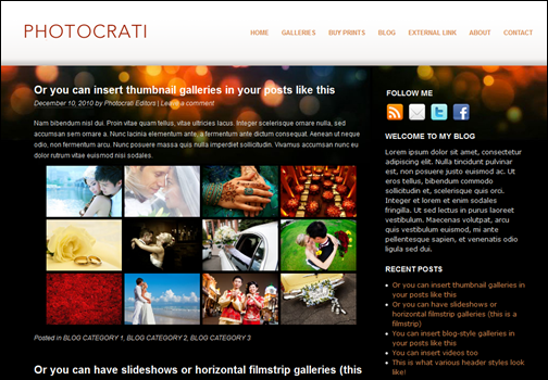 Photocrati WordPress Photography Themes Pack