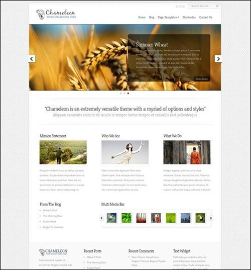 chameleon-wordpress-business-theme