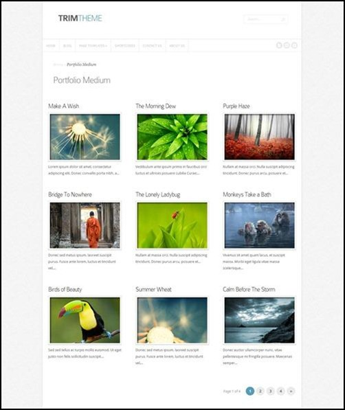 trim business wordpress theme