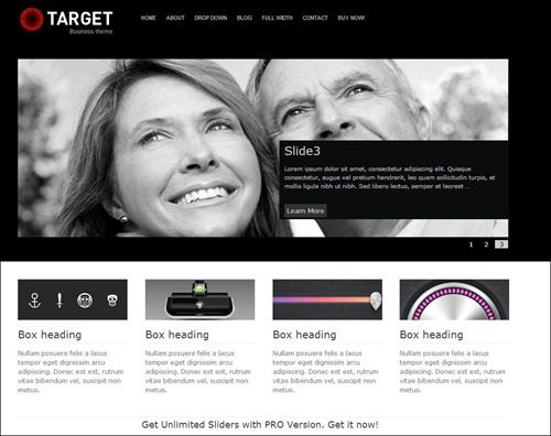 target-wordpress-business-theme