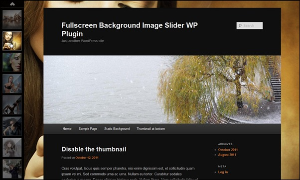 full-screen-background-slider-wordpress-plugin