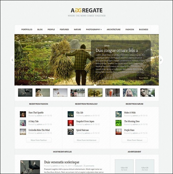 Aggregate_wp-theme