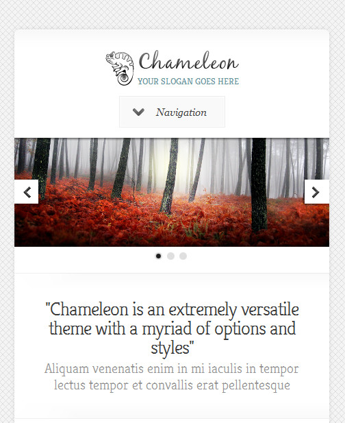 chameleon2 responsive wordpress theme