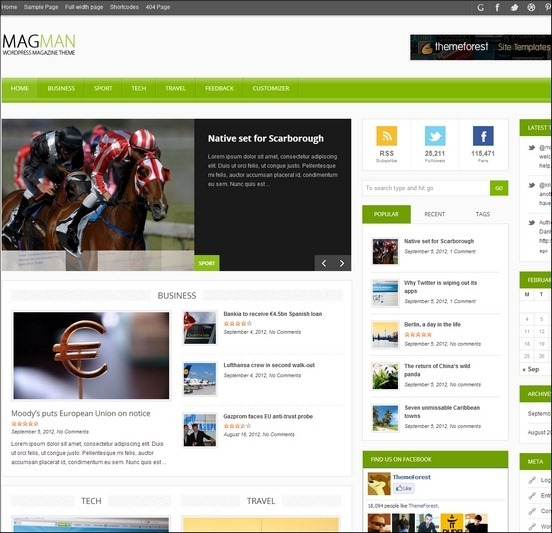 magman-wp-theme