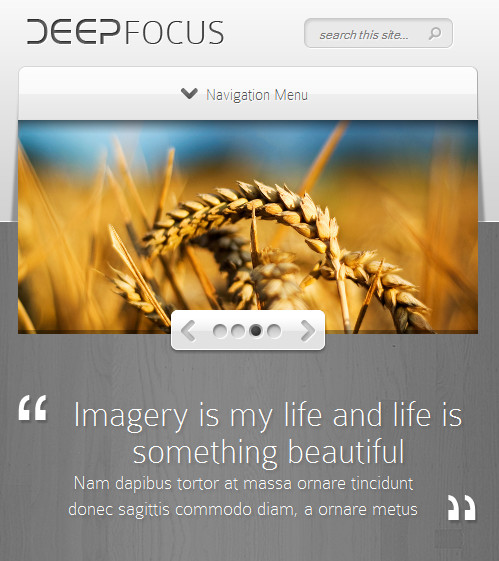 deep focus responsive wordpress theme