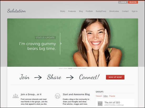 saluation-wordpress-theme_thumb.jpg