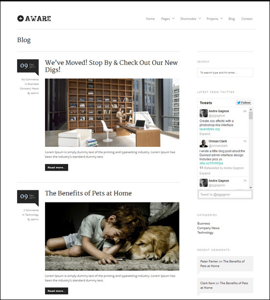 Aware-responsive-news theme