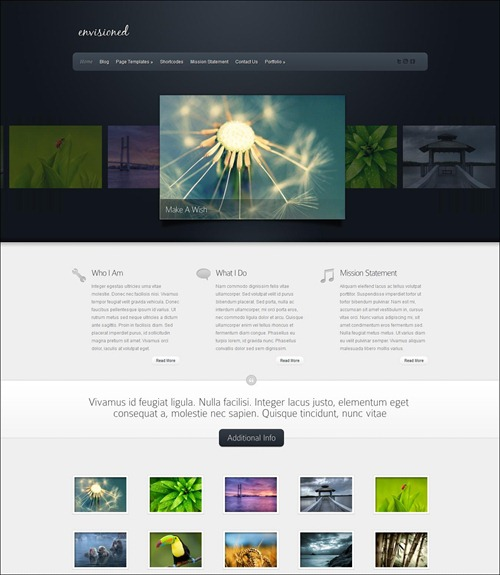 envisioned photography website template