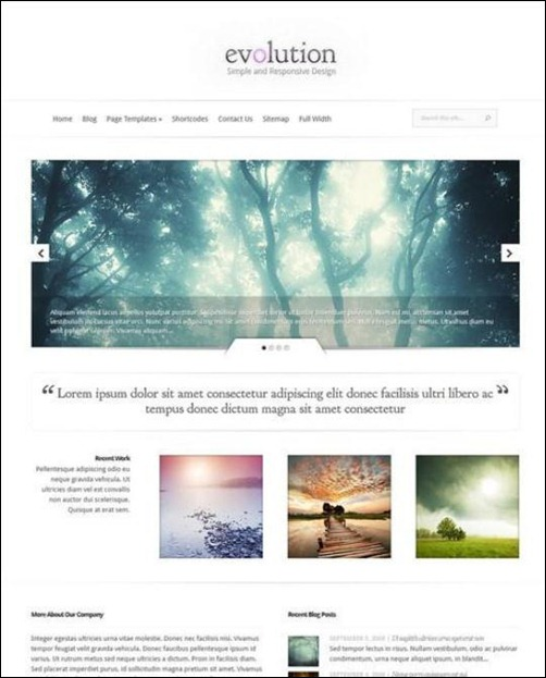 evolution-wordpress-photography-theme